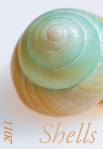 "Foto-Kalender 2011 ""Shells"""