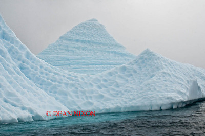 ICEBERG IN PLENEAU BAY - 0427