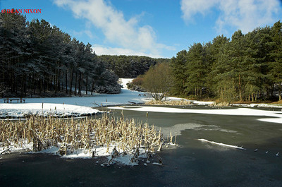 LAKE AT PARKHALL WITH SNOW 0175