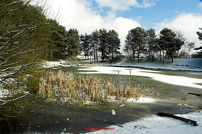 LAKE AT PARKHALL WITH SNOW 0174
