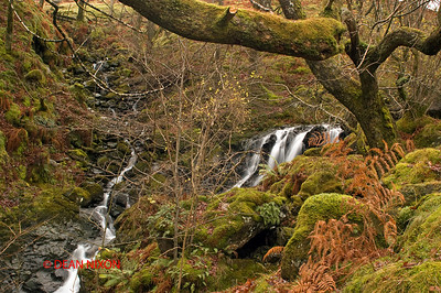 GATESGARTHDALE BECK, HONISTER PASS, LAKE DISTRICT 0291