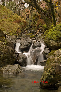 GATESGARTHDALE BECK, HONISTER PASS, LAKE DISTRICT 0296
