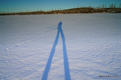 Otter track and a long shadow cast on Horseshoe Lake by late afternoon sun.