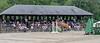 DR HORSE SHOW 6-2021 BRYAN TROPHY-9002
