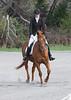CRHC 2014 Pony Club Horse Trials-2191