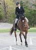 CRHC 2014 Pony Club Horse Trials-2188