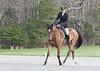 CRHC 2014 Pony Club Horse Trials-2186