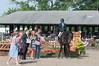 DRHC Horse Show USEF Premier 6-20-15-6329
