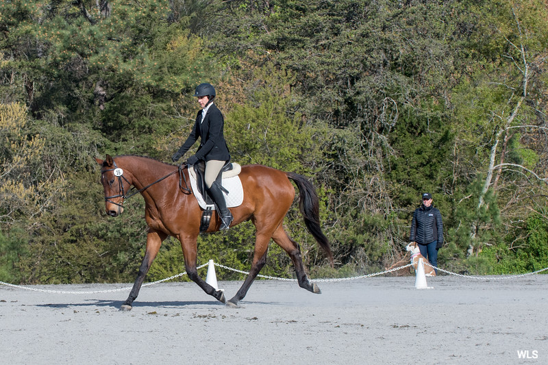DRHC PC Horse Trials 4--1393