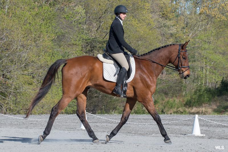 DRHC PC Horse Trials 4--1397