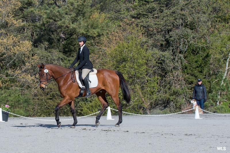 DRHC PC Horse Trials 4--1394
