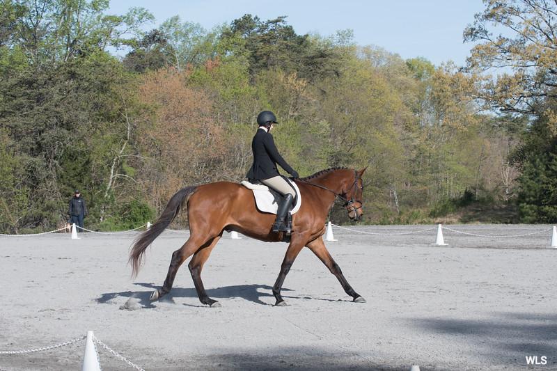 DRHC PC Horse Trials 4--1410
