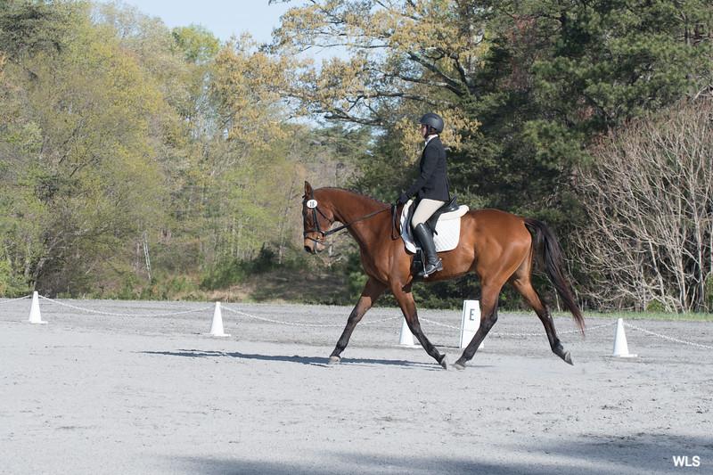 DRHC PC Horse Trials 4--1417
