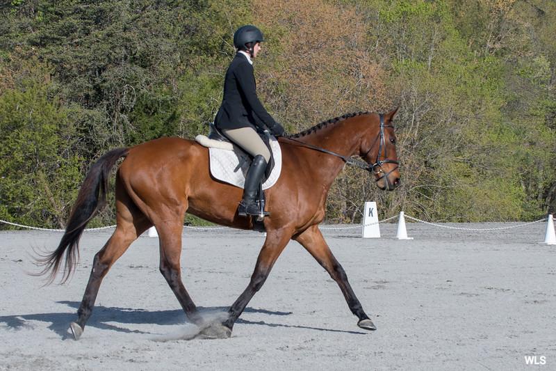 DRHC PC Horse Trials 4--1395