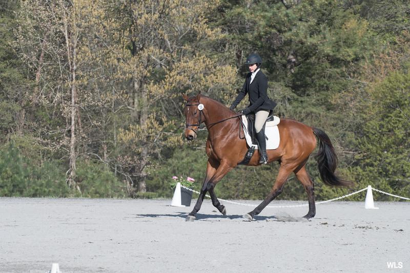DRHC PC Horse Trials 4--1414