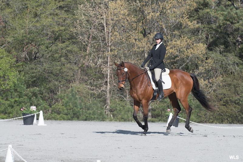 DRHC PC Horse Trials 4--1416