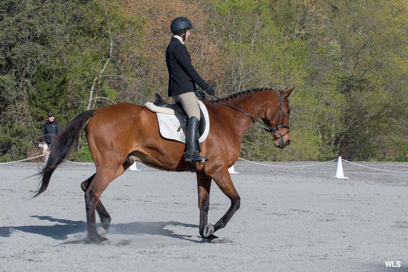 DRHC PC Horse Trials 4--1396
