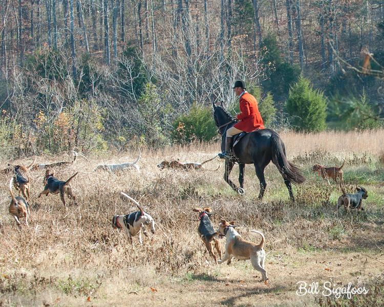 DRHC Thanksgiving Hunt 2012-1173