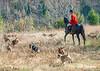 DRHC Thanksgiving Hunt 2012-1174