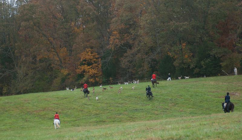 Fullstream Farm Hunt Oct 2012-0776