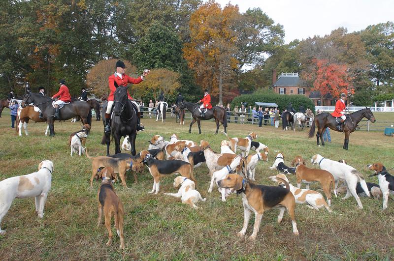 Fullstream Farm Hunt Oct 2012-8262