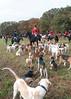 Fullstream Farm Hunt Oct 2012-8268