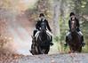 Fullstream Farm Hunt Oct 2012-8396