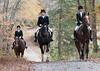 Fullstream Farm Hunt Oct 2012-8400