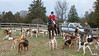 DRHC Hunt from Kennels 3-17-2018-0184