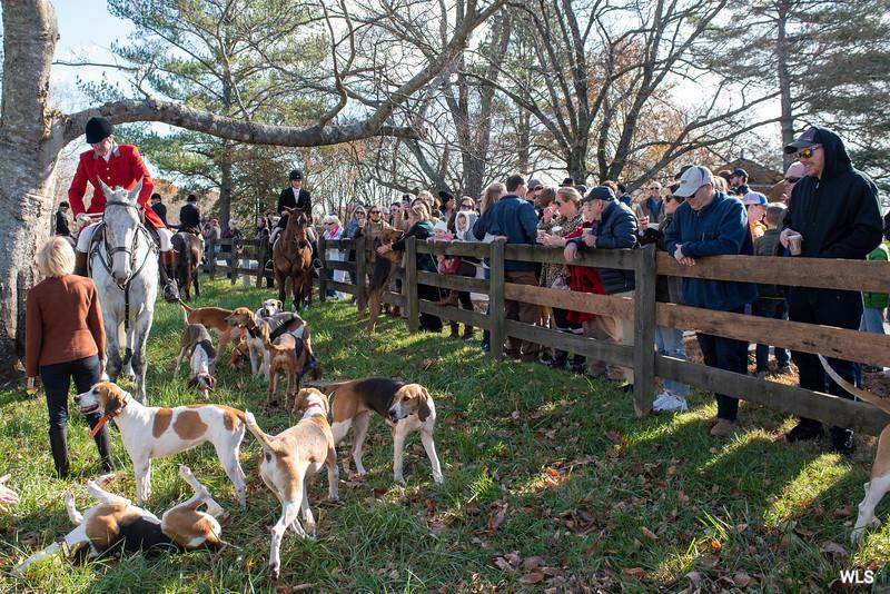DRHC Thanksgiving  Hunt  2019-6636