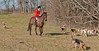 DRHC Hunt 1-8-2012-0012