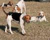 DRHC Hunt 1-8-2012-0047