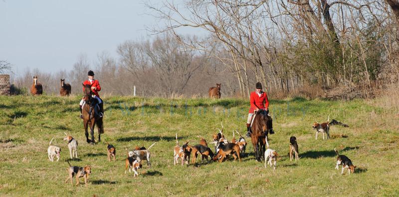 DRHC Hunt 1-8-2012-9995
