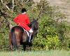Deep Run Thanksgiving Hunt 2100-9313