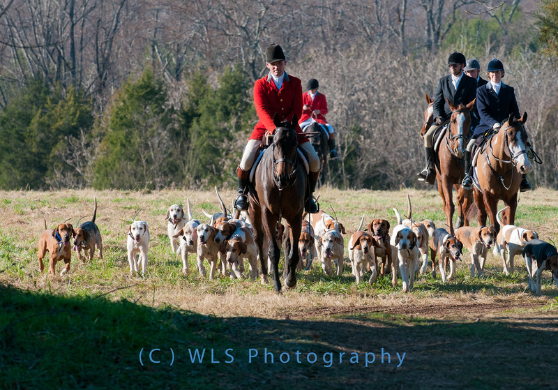 Deep Run Thanksgiving Hunt 2100-9378
