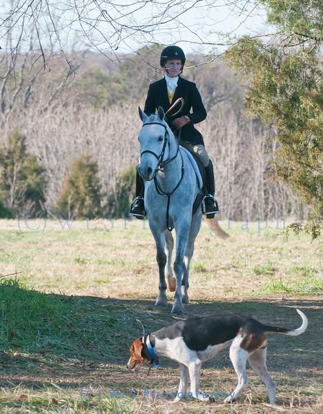 Deep Run Thanksgiving Hunt 2100-9402