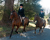 Deep Run Thanksgiving Hunt 2100-1319