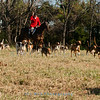 Deep Run Thanksgiving Hunt 2100-1194-3