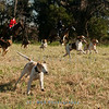 Deep Run Thanksgiving Hunt 2100-1194
