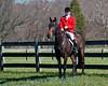Deep Run Thanksgiving Hunt 2100-9295