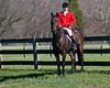 Deep Run Thanksgiving Hunt 2100-9297