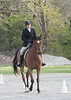 CRHC 2014 Pony Club Horse Trials-2187