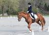 CRHC 2014 Pony Club Horse Trials-2197