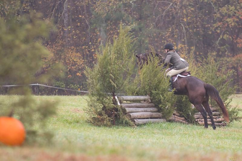 DRHC Hunter Trials Nov 2017-5888