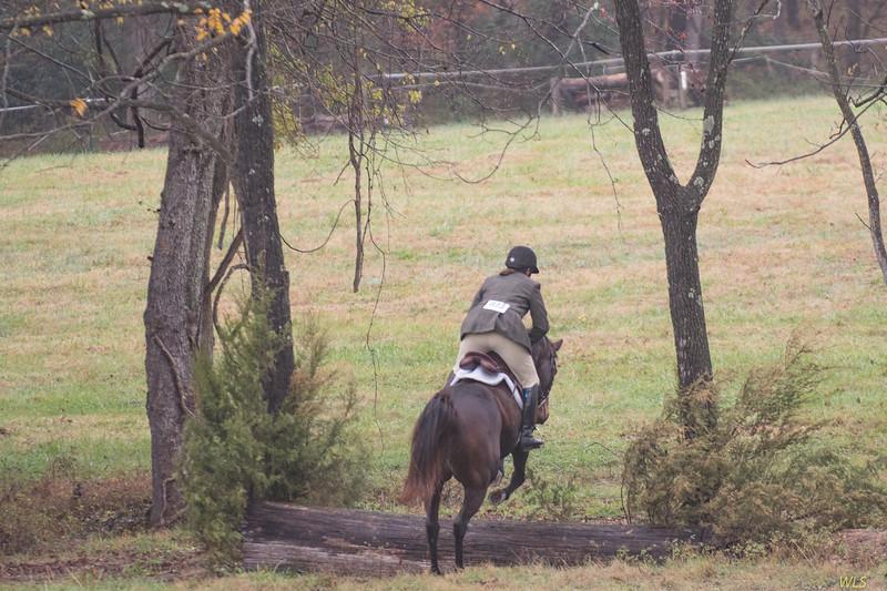DRHC Hunter Trials Nov 2017-5892