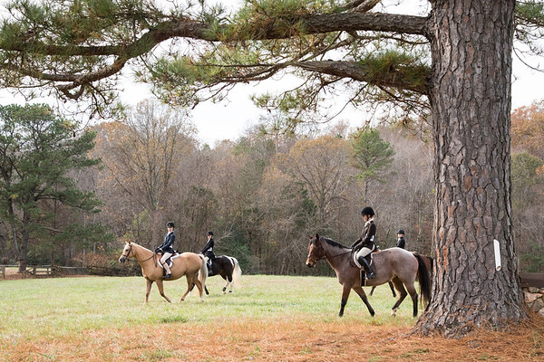DRHC Hunter Trials Nov. 2015  HACK/PLEASURE