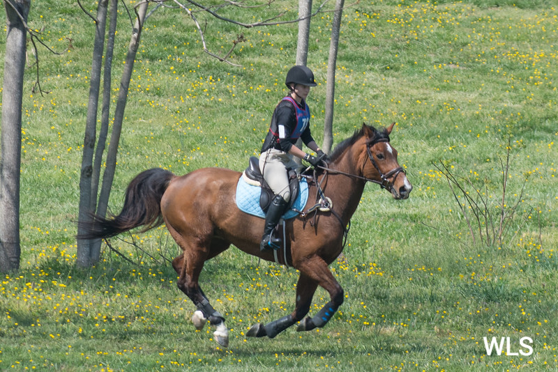 DRHC PONY CLUB TRIALS 4-15-17-1033