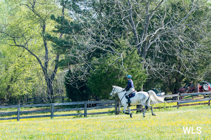 DRHC PONY CLUB TRIALS 4-15-17-4