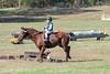 Doubletree Farm Derby 11-10-19-5830
