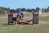 Doubleytree Farm Derby 11-10-19-0738